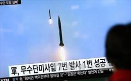 Nghị sĩ Nhật Bản thông qua nghị quyết phản đối Triều Tiên phóng tên lửa