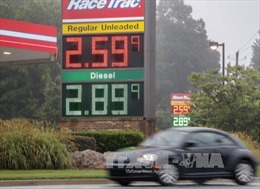Siêu bão Harvey và điều khác thường trên thị trường dầu mỏ
