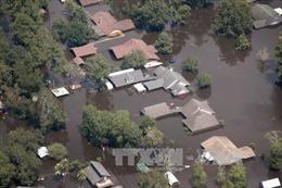 Chia sẻ với Hoa Kỳ về thiệt hại to lớn do siêu bão Harvey