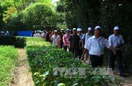 Người dân nô nức về Khu di tích Kim Liên tri ân Chủ tịch Hồ Chí Minh
