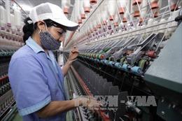 Cần đầu tư cho ngành dệt, nhuộm để được hưởng lợi từ EVFTA