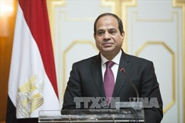 Tổng thống Ai Cập gặp Tướng K.Haftar bàn về tình hình Libya