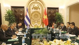 Đoàn Bộ Ngoại giao Cuba thăm Việt Nam