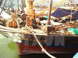 Tàu cá vỏ thép hư hỏng, trách nhiệm chính thuộc về các công ty đóng tàu