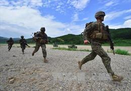 Lính thủy đánh bộ Hàn Quốc tập trận quy mô lớn gần biên giới biển với Triều Tiên