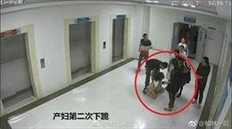 Trung Quốc rúng động vụ thai phụ tự tử vì không được sinh mổ