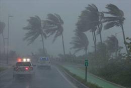 Mỹ, Cuba và Mexico khẩn trương đối phó với bão Irma và Katia