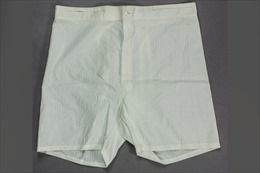Bán đấu giá quần đùi của Hitler, giá dự kiến cả trăm triệu đồng