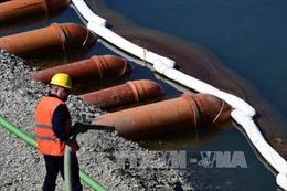 Hy Lạp: Tàu chở dầu chìm gây tràn dầu gần Athens