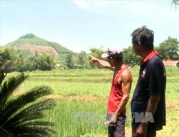 Sai phạm lớn trong thu thuế đất nông nghiệp tại xã Tịnh Hiệp