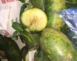 Vĩnh Phúc làm rõ vụ đưa rau quả kém chất lượng vào trường tiểu học