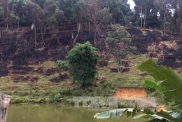 Điện Biên làm rõ việc 6.520 m2 rừng đặc dụng Pá Khoang bị chặt phá