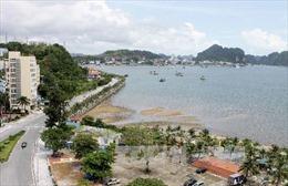 Quảng Ninh cấm mở nhạc quá 22 giờ ở khu vực công cộng Khu du lịch Bãi Cháy