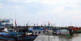 Cứu nhiều ngư dân và tàu cá gặp nạn khi di chuyển để tránh bão số 10