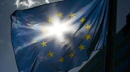 EU thiệt hại hơn 100 tỷ USD vì trừng phạt Nga