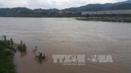 Bão số 10: Bảo đảm an toàn đê điều trên hệ thống sông Hồng, sông Thái Bình