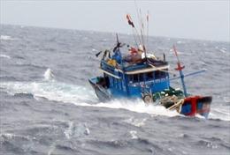 Thanh Hóa tìm kiếm tàu cá chở 10 thuyền viên bị mất liên lạc trên biển