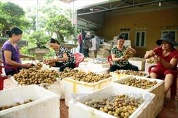 Bàn giải pháp thúc đẩy xuất khẩu sang thị trường Thái Lan