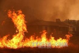 Thanh Hóa: Dập tắt đám cháy tại nhà bếp Trường Mầm non Điện Biên