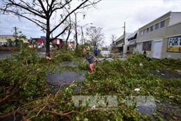 Mỹ tiếp tục chi 3,7 USD hỗ trợ Puerto Rico khắc phục hậu quả siêu bão