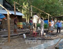 Tây Ninh di dời 37 căn nhà xây dựng trái phép trong rừng phòng hộ Dầu Tiếng