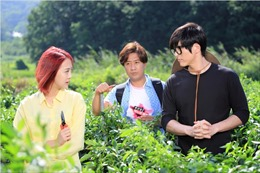 Phim Hàn Quốc 'Nàng dâu lắm chiêu' lên sóng truyền hình
