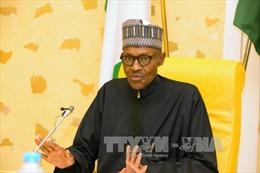 Tổng thống Nigeria lên án các hành động 'chia cắt' đất nước