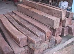 Quảng Trị thu giữ 1,4 tấn gỗ nhập lậu từ Lào