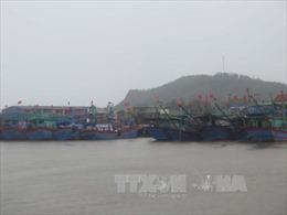 Quảng Nam bắn pháo hiệu thông báo áp thấp nhiệt đới và hướng dẫn tàu thuyền vào bờ