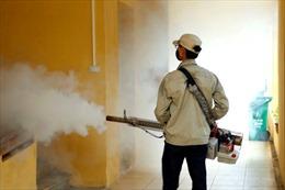 Lạnh dưới 16 độ muỗi sốt xuất huyết mới ngừng sinh sôi