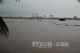 Chủ động ứng phó với nguy cơ ngập lụt những khu vực thấp ven sông Đồng Nai