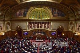 Hạ viện Pháp thông qua kế hoạch cải cách thuế của Tổng thống Macron