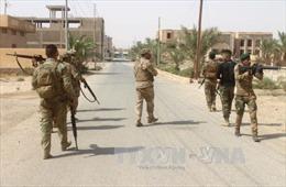 Quân đội Iraq tiêu diệt 75 tay súng IS, giải phóng nhiều khu vực ở Tây Anbar