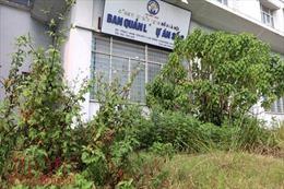Hoang tàn ba tòa nhà bỏ không tại Hà Nội bị đề nghị đập bỏ