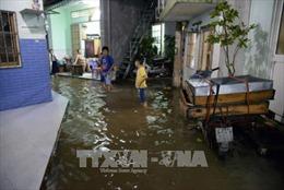 TP. Hồ Chí Minh ứng phó triều cường và áp thấp nhiệt đới