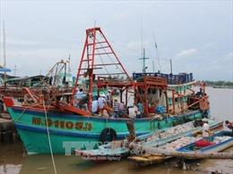Ứng phó với bão số 12: Cấm tàu thuyền ra khơi, lên phương án sơ tán người dân