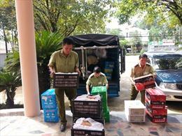 Nửa tấn trái cây, hàng chục nghìn lọ nước hoa quả tuồn trái phép vào Việt Nam