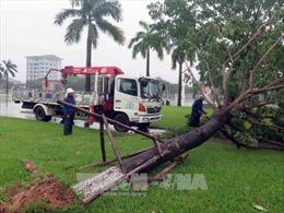 Lùi trận đấu Quảng Nam FC - Than Quảng Ninh sang ngày 5/11 do bão