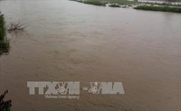 Quảng Nam: Giải cứu 131 công nhân bị mắc kẹt khi nước sông vượt báo động 3 bao vây
