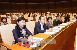 Đại biểu Quốc hội nghi ngờ có sự tiếp tay cho nạn phá rừng