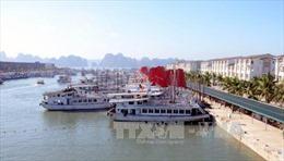 Đình chỉ hoạt động 2 tàu du lịch vi phạm trên vịnh Hạ Long