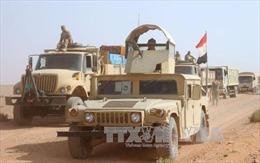 Hai sư đoàn của Iraq tấn công vào thị trấn cuối cùng do IS kiểm soát
