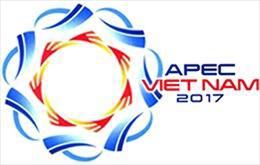 Triển lãm tranh ghép gốm Đồng Nai 'Chân dung lãnh đạo các nền kinh tế APEC 2017'