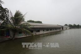 Hải Dương: Trang trại chăn nuôi xâm lấn dòng chảy sông Đình Đào