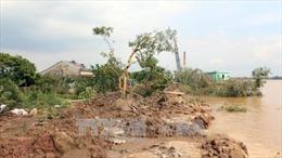 Khẩn trương hỗ trợ người dân vùng sạt lở đê bao cồn Phú Đa