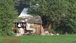 Các hồ tại Hà Nội bị ô nhiễm bởi nước thải