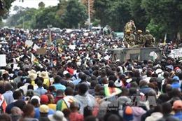 SADC cam kết hỗ trợ Zimbabwe giải quyết khủng hoảng chính trị