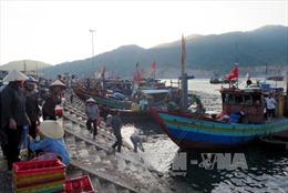 Lao động nghề biển: Thiếu và yếu
