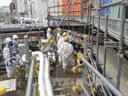 Nhật Bản chuẩn bị tái khởi động 2 lò phản ứng hạt nhân