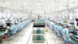Trung bình mỗi doanh nghiệp điện tử có 9 sai phạm trong sử dụng lao động